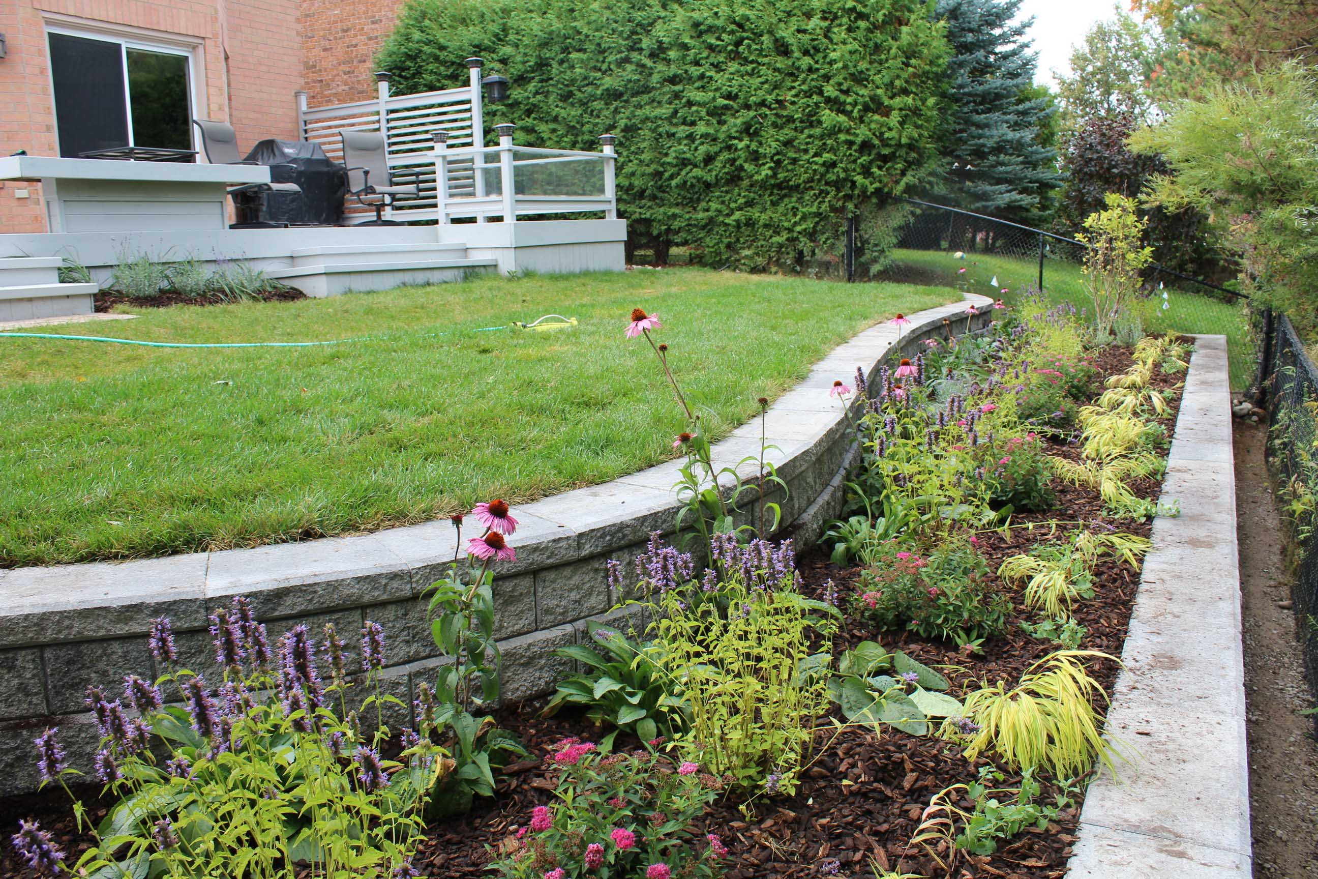 Back yard curved retaining wall and garden.